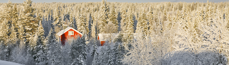 Cameprreis naar Lapland